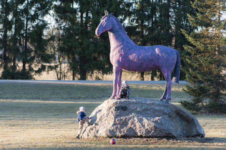 Luunja roosa hobune fotograaf Sulev Lange